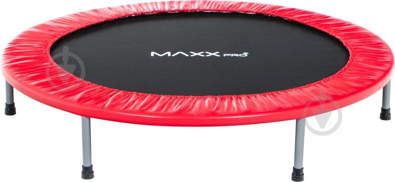 Батут MaxxPro 48 INCH - фото 1