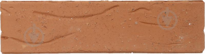 Цегла керамічна СБК зі світлим декором червоний моркв'яний - фото 2