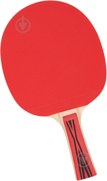 Ракетка для настольного тенниса TECNOPRO Tournament M3 1 star - фото 1