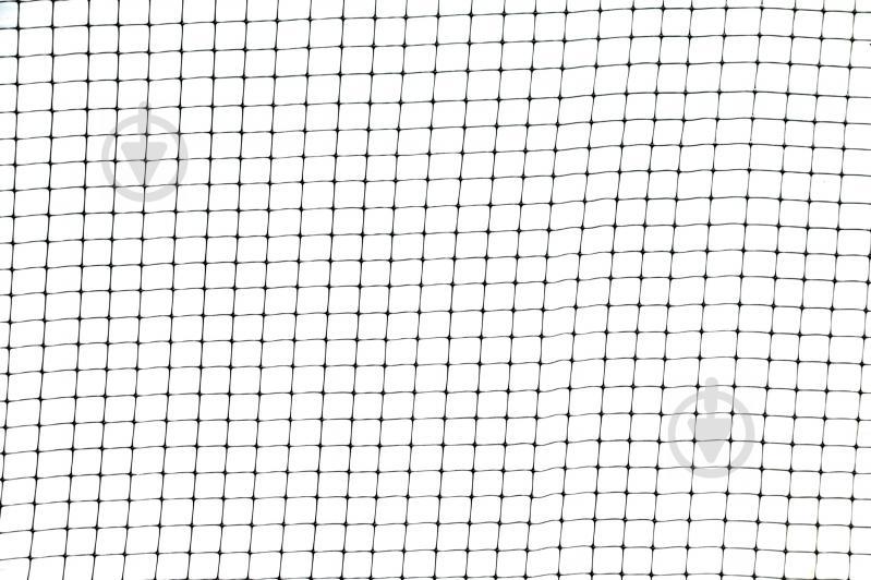 Сетка Клевер Универсальная 1х100 м черная