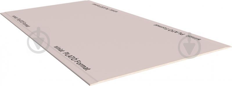 Гипсокартон обычный Plato 2500x1200x12,5 мм - фото 3