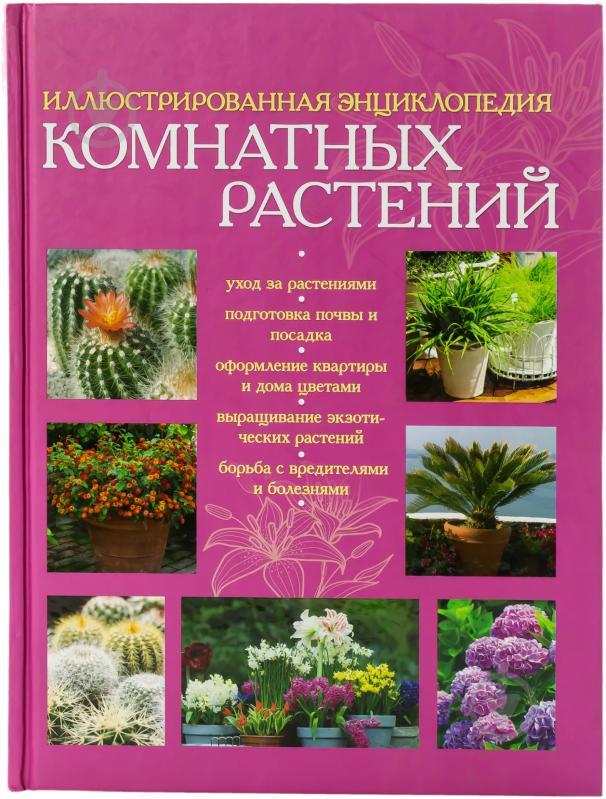 Цветы дом каталог