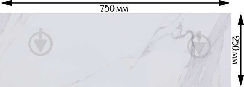 Плитка Атем Calacatta GR 25x75 - фото 3