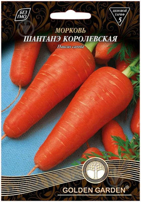 Крупные сорта моркови для зимнего хранения