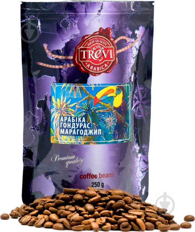 Кофе в зернах Trevi Арабика Гондурас Марагоджип 250 г (4820140050712) - фото 1