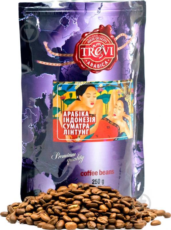 Кофе в зернах Trevi Арабика Индонезия Суматра Линтунг 250 г (4820140050736) - фото 1