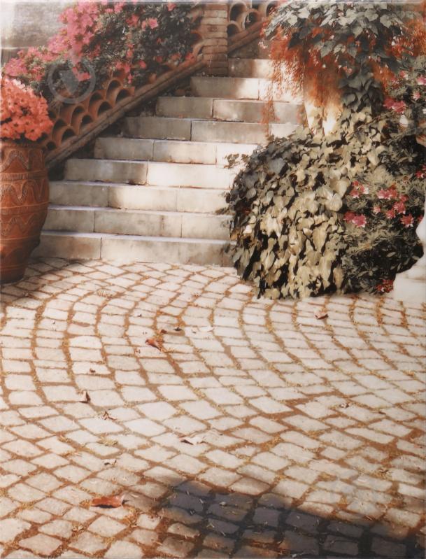 Плитка Golden Tile Troyanda Sorrento декор №6 60Б361 25x33 - фото 1