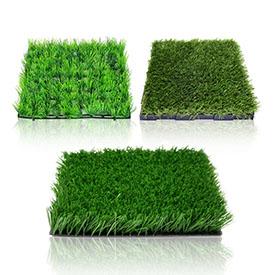 Насіння для газону