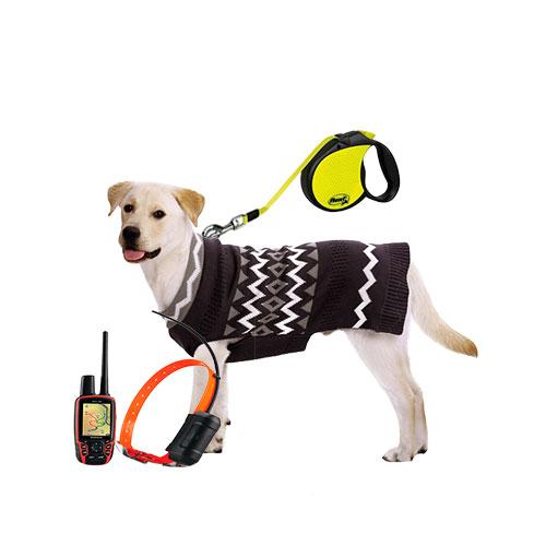 Амуниция и одежда для животных