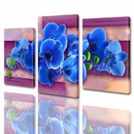 Картина модульная ArtStar Орхидея ADFL0002 120х180 см 3 части