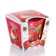 Свеча ароматическая Flora Christmas Spices Cinnamon & Apple (28807)