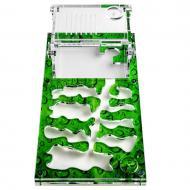 Ферма мурашина Мурашиний Рай S Зелений лист для мурах-женців Messor Structor