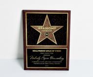 Диплом БРТ лучшему руководителю Звезда Аллеи Славы 22х30 см (164)
