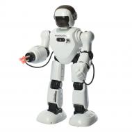 """Робот на радиоуправлении """"Robot Instructors"""", KLT"""