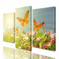 Картина модульная ArtStar Бабочки ADNA0008 45х70 см 3 части