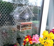 Годівничка для птахів на вікно House_for_birds Теремок