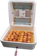 Инкубатор Рябушка ИБ-70 на 70 яиц с переходником на 12 В + цифровой терморегулятор