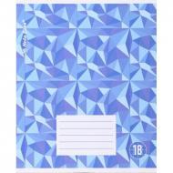 Шкільний зошит Nota Bene 18 аркушів в клітинку 1_2020