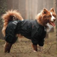 Комбінезон для собак HUNTER-D/M водостійкий без підкладки