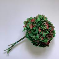 Гортензия стабилизированная Зелено-красного цвета