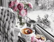 Картина по номерам Морозное утро (GX39462)