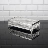 Шкатулка металлическая со стеклянной крышкой Zeyve Elegans 24x12x7 см Серебро (S-2050G)