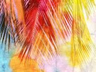 Картина на холстеLaPrint Пальмовые листья 40x30 см Натуральный холст (200050)