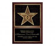 Диплом БРТ Звезда Аллеи Славы подарок лучшему учителю/классному руководителю
