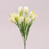 Букет Крокусов Flora Кремовый (72760)