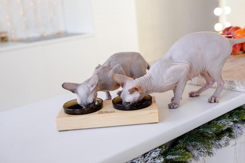 Підставка з мисками для собак і котів Pets Lounge 2х200 мл Black - фото 3